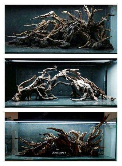 treibholz deko 1991 die besten 25 aquarium treibholz ideen auf