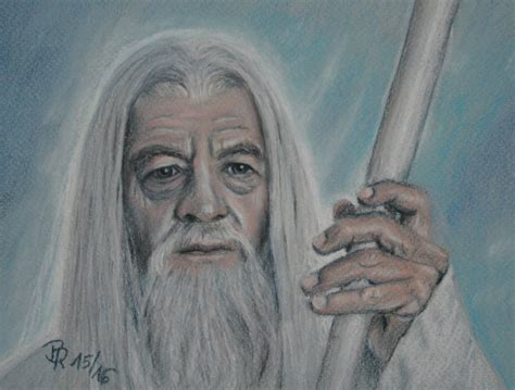 gandalf the pug gandalf the white by loonalucy on deviantart