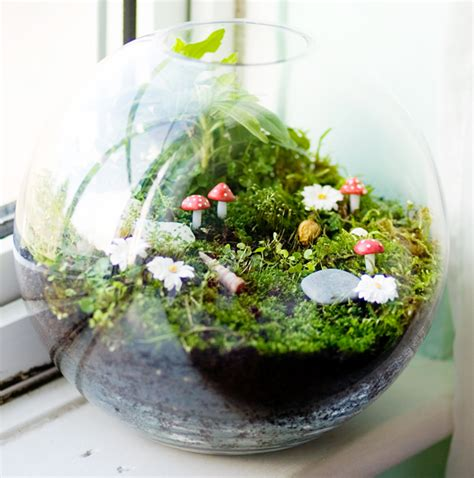 Handmade Terrariums - better housekeeper all things cleaning gardening
