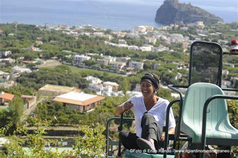 il giardino mediterraneo ischia ischia news ed eventi ischia vendemmia al giardino