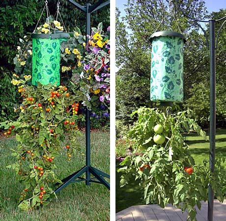your topsy turvy tomato benefits just for and home