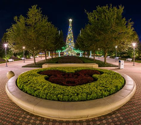 five photos that will make you want to visit a walt disney world resort hotel during the