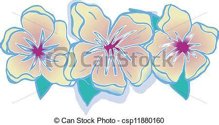 fiori hawaiani disegni clipart vettoriali di floreale hawaiano fiori con