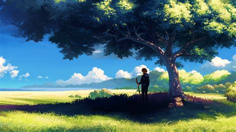 Landscape Character Definition Axin Or Anime