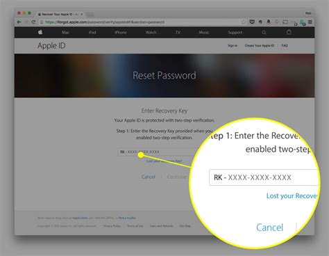 reset  apple id password cult  mac