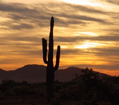Landscape Rock Glendale Az Glendale Arizona Alchetron The Free Social Encyclopedia