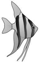Free Fish Clipart - Free Clipart Graphics, Images and