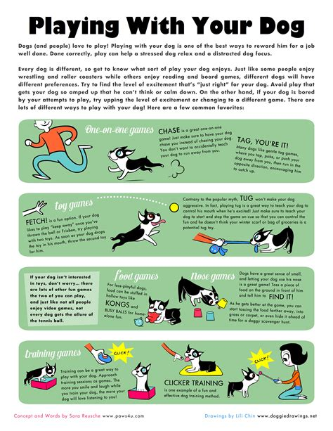 games to play with your dog in the house pet hints and tips on pinterest dog training dogs and homemade dog