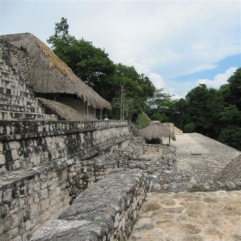 Pyramid Turtle Common climb to the top of the coba pyramid