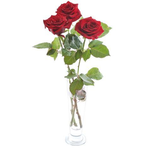 rosa in vaso consegna composizione di 3 rosse in vaso