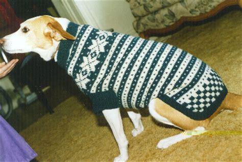 knitting pattern dog sweater large knitting home made pet sweaters knit a custom stylish dog