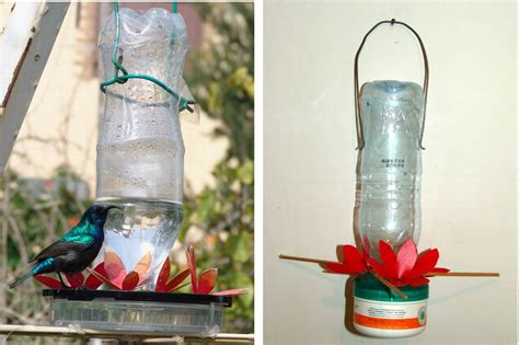 making humming birds sunbirds feeder make humming birds