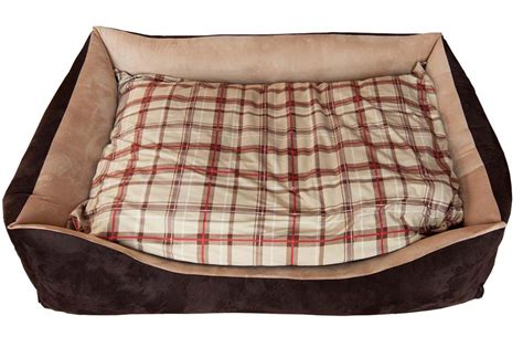 cucce da interno per cani taglia grande cuccia divano cani taglia grande arredo e