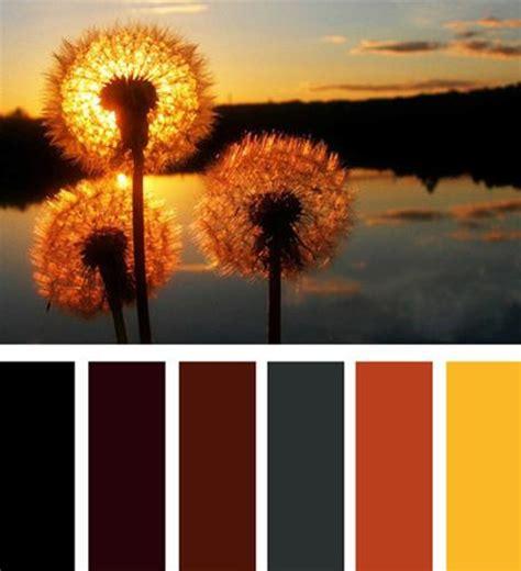 orange color theme decorating color combinations decorating color