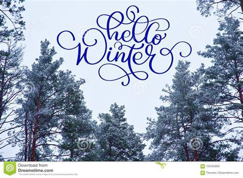testo ciao ciao ciao testo di calligrafia di inverno su una cartolina d