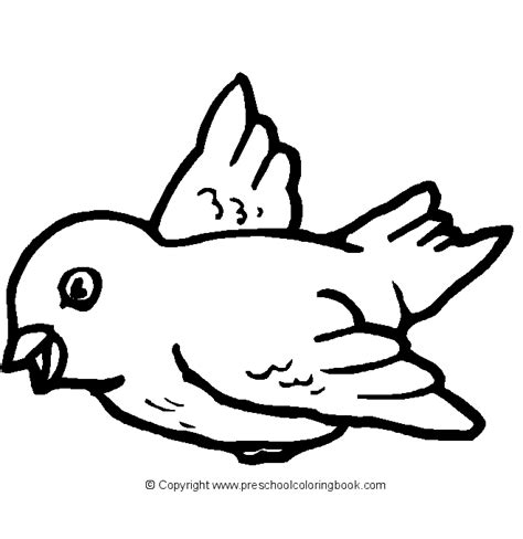 Bird Coloring Pages For Preschoolers www preschoolcoloringbook bird coloring page