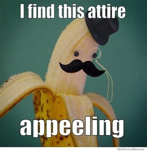 Pun Meme - the worst puns on the internet 42 pics