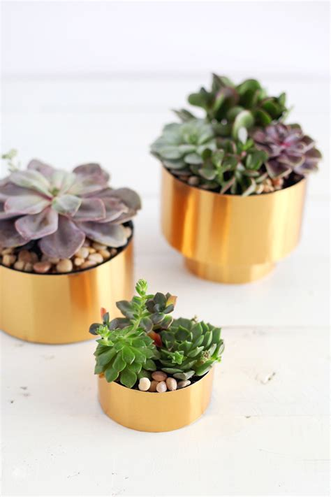 diy succulent planter brass succulent planter diy a beautiful mess