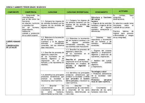 matriz de competencias y capacidades 2016 para tercer grado matriz de capacidades iv ciclo 2014