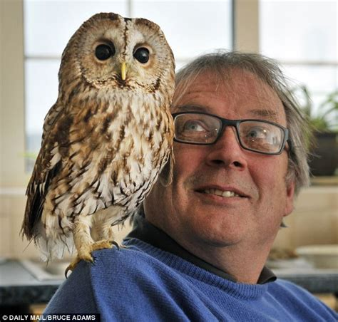 this owl is too scared to go outside so it stays inside