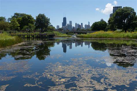 blick chicago lincoln park bilder aus chicago im august 2016