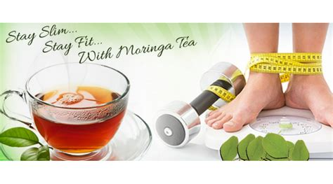 weight management tea is moringa tea for weight loss organic veda