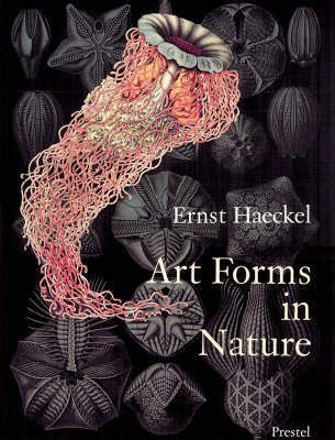 art forms in nature 3791319906 art forms in nature richard hartmann 9783791319902
