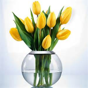 blumen vase variable blumenvase 3 jahre garantie pro idee