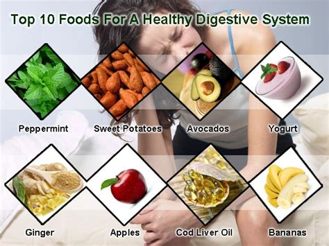 7 Tips To A Healthy Digestive System by Pin By Brtty King On Recreation And Leisure