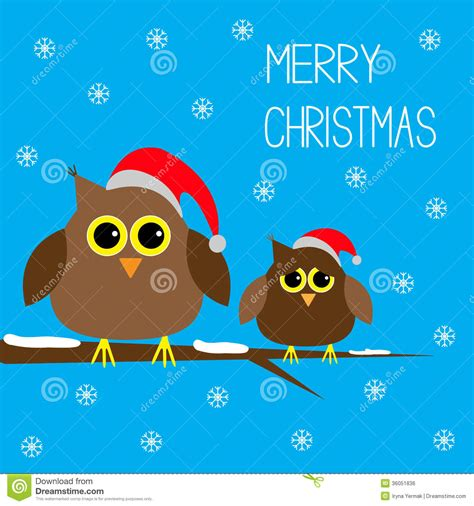 cute owls christmas hats snowflakes merry  stock vector image