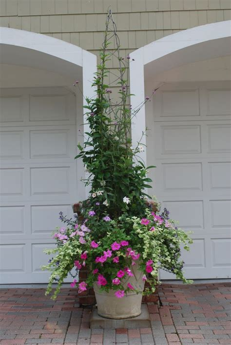 design flower containers 123 best container gardening images on pinterest