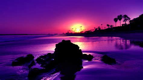 nice themes photo amazing purple sunset beach 7030201