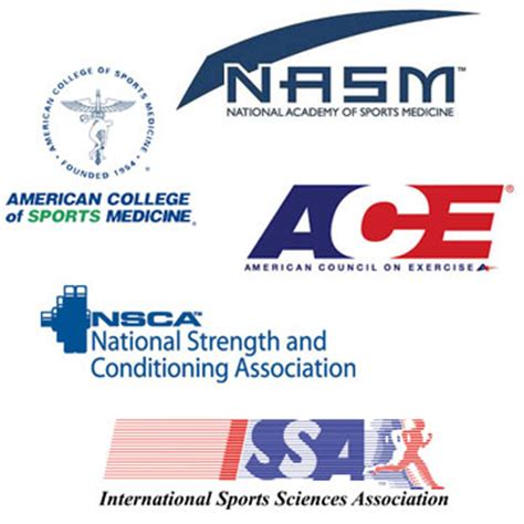 best personal trainer certification top 5 personal certifications college