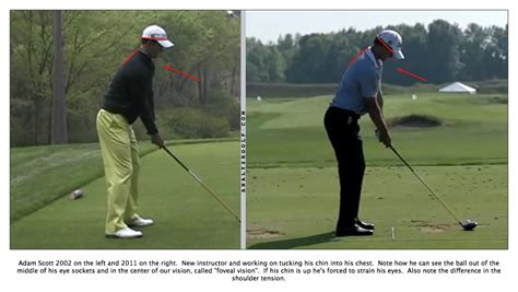 posture in the golf swing good golf posture how to address the golf ball swing