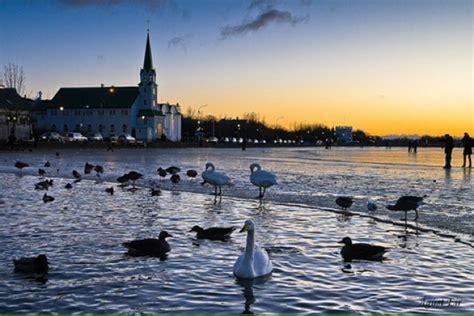 reykjavik    reykjavik iceland