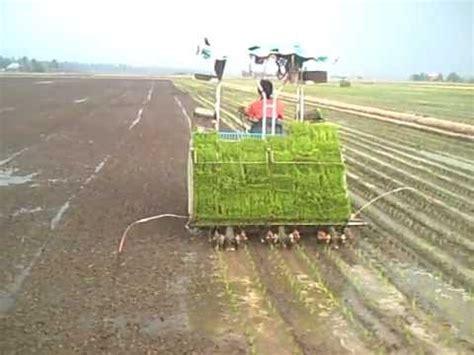 Mesin Zaaga alat tanam padi manual manual rice transplanter doovi