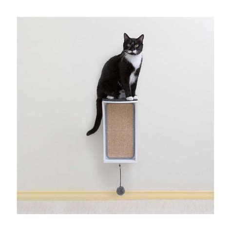modern cat wall system  piece combo kit catsplay superstore