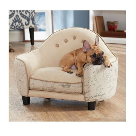 best dog couch best dog couch images on pinterest pet beds animals and