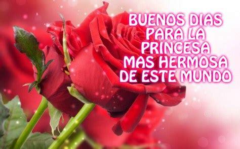 imagenes de buenos dias amor con flores im 225 genes bonitas de buenos d 237 as con flores y frases