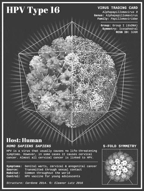 Animated Virus Trading Cards - Hipsthetic