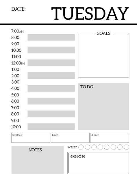 Daily Planner Printable Template Sheets Paper Trail Design Daily Organizer Template