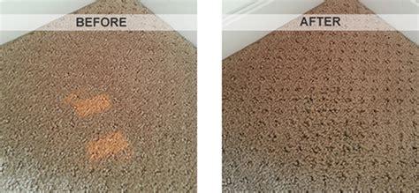 can you dye a rug can you carpet carpet vidalondon