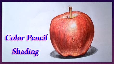 colored apples apple color pencil drawing www pixshark images