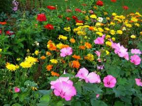 Images Of Flowers In The Garden Flower Bed Pictures Flower Garden Pictures