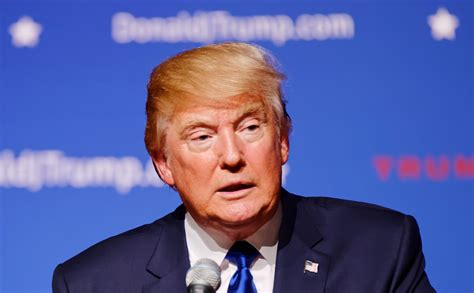 trump s donald trump exposed in ashley madison hack nsfw