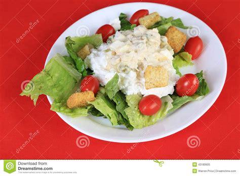 healthy tuna salad lunch stock photo image 43180605