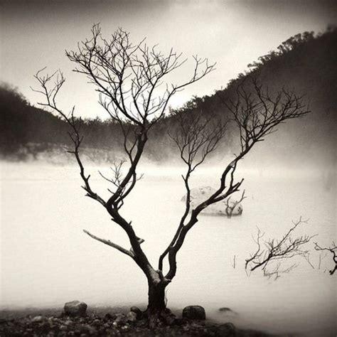 imagenes lindas en blanco fotos en blanco y negro im 225 genes taringa