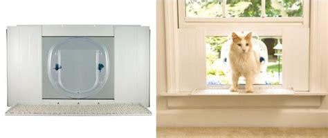 alternative to a traditional pet door the pet safe cat