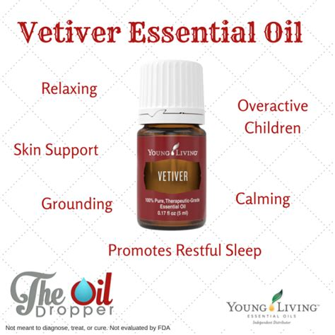 Living Essential Vetiver 5ml living essential archives the dropper