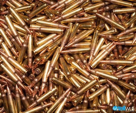 Background Check To Buy Ammo Daily Debate Should Background Checks Be Required To